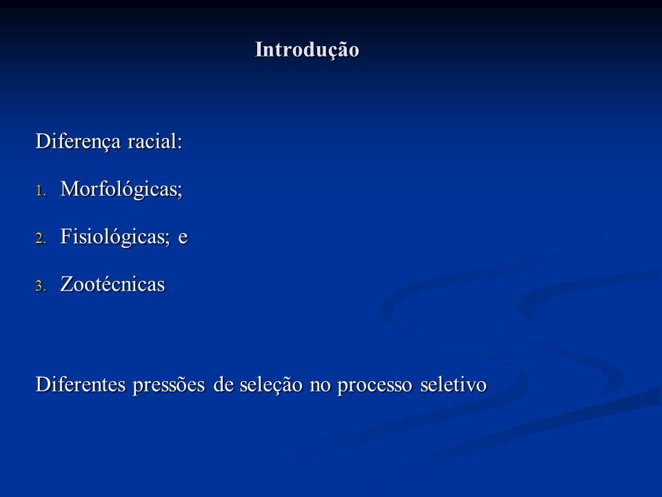 Introdução Diferença racial: 1.Morfológicas; 2. Fisiológicas; e 3.