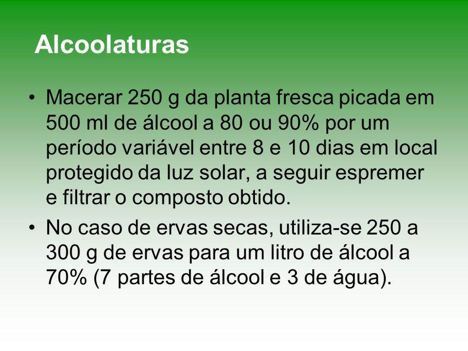 Alcoolaturas Macerar 250 g da planta fresca picada em 500 ml de álcool a 80 ou 90% por um período variável entre 8 e 10 dias em local protegido da luz