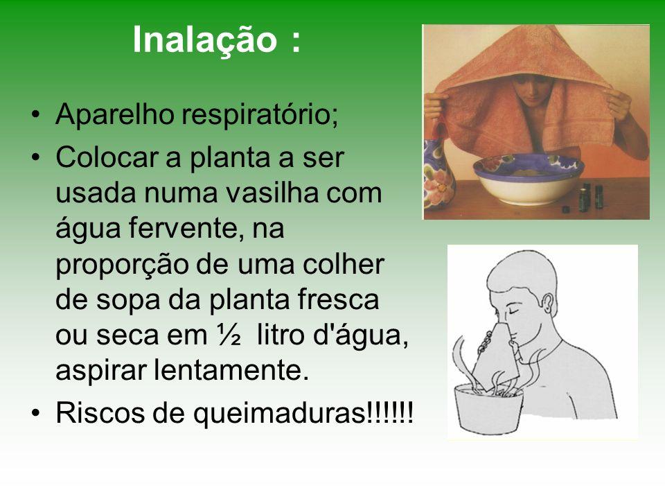 Inalação : Aparelho respiratório; Colocar a planta a ser usada numa vasilha com água fervente, na proporção de uma colher de sopa da planta fresca ou