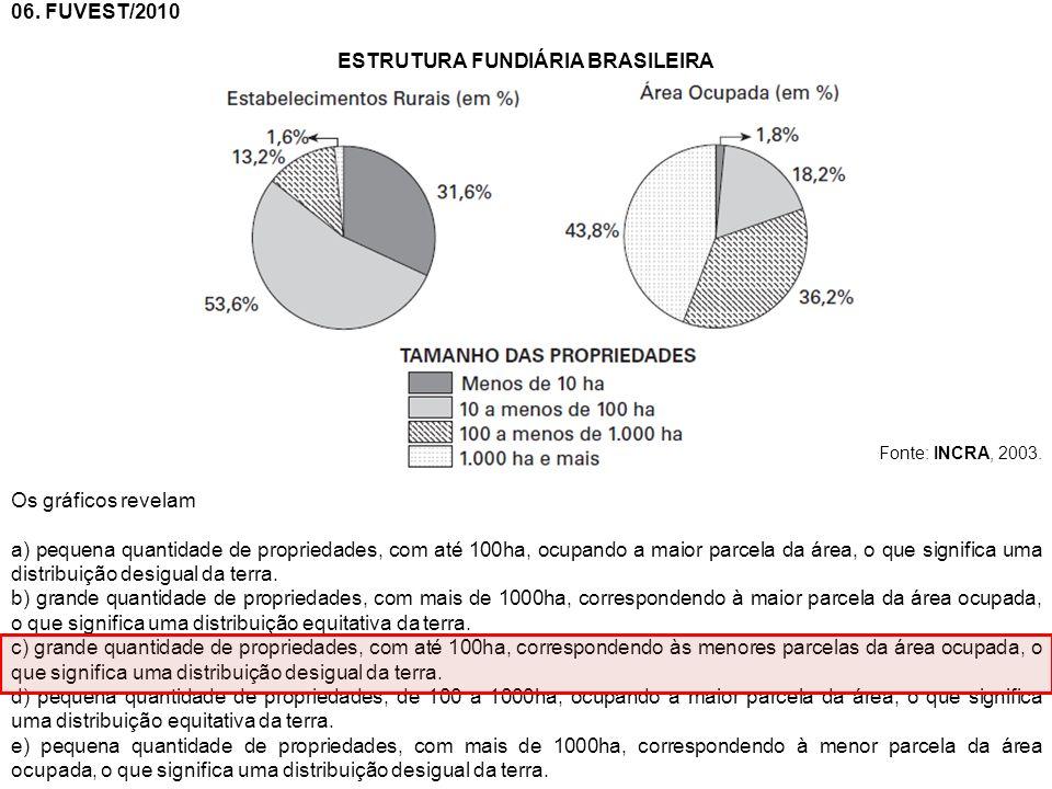 06. FUVEST/2010 ESTRUTURA FUNDIÁRIA BRASILEIRA Fonte: INCRA, 2003. Os gráficos revelam a) pequena quantidade de propriedades, com até 100ha, ocupando