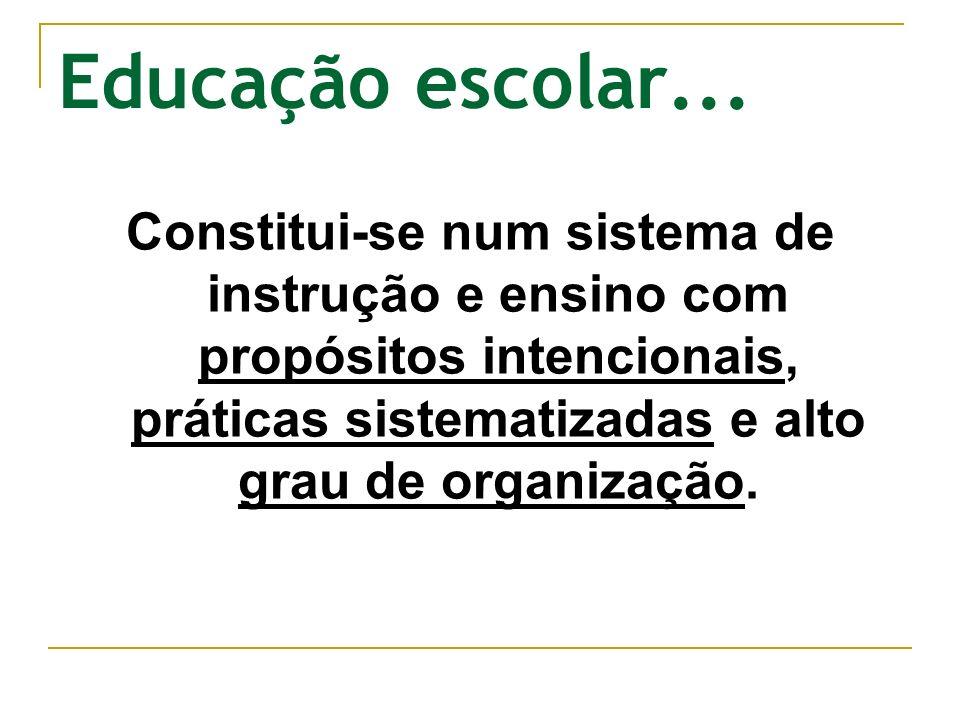 Educação escolar... Constitui-se num sistema de instrução e ensino com propósitos intencionais, práticas sistematizadas e alto grau de organização.
