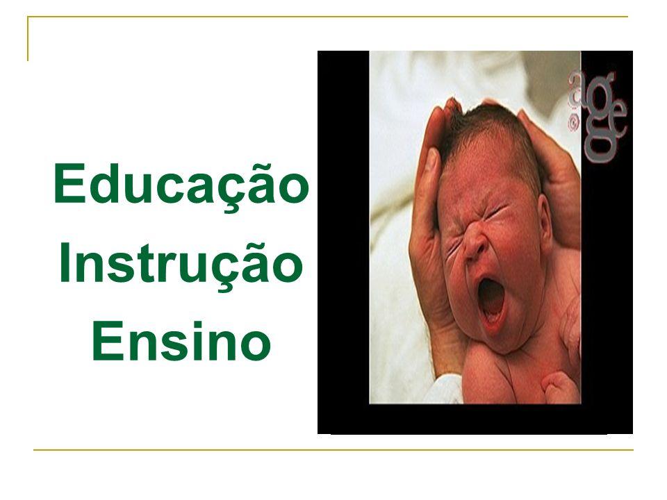 Educação Instrução Ensino