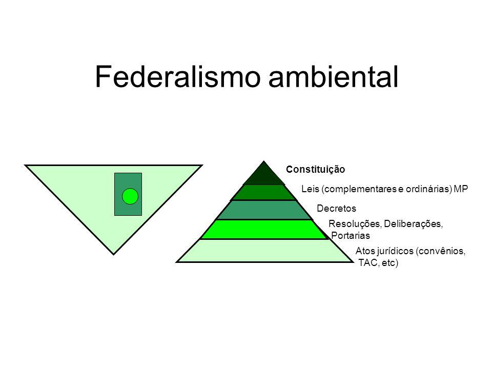 Federalismo ambiental Constituição Leis (complementares e ordinárias) MP Decretos Atos jurídicos (convênios, TAC, etc) Resoluções, Deliberações, Porta