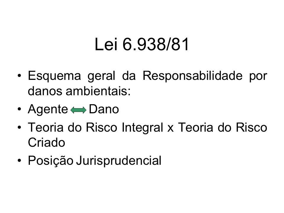Lei 6.938/81 Esquema geral da Responsabilidade por danos ambientais: Agente Dano Teoria do Risco Integral x Teoria do Risco Criado Posição Jurispruden