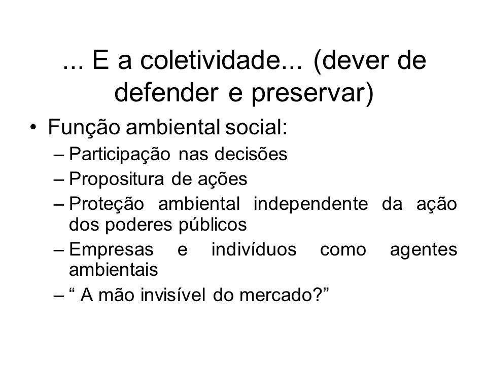 ... E a coletividade... (dever de defender e preservar) Função ambiental social: –Participação nas decisões –Propositura de ações –Proteção ambiental