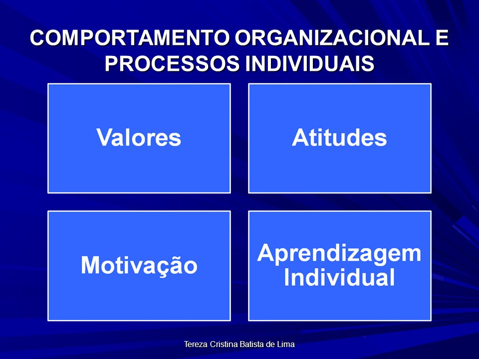 Tereza Cristina Batista de Lima TEORIA ERG Sustenta que as pessoas são motivadas por três tipos de necessidades hierarquicamente dispostas: Necessidades de Existência (E), Necessidades de Relacionamento (R) e Necessidades de Crescimento (G)