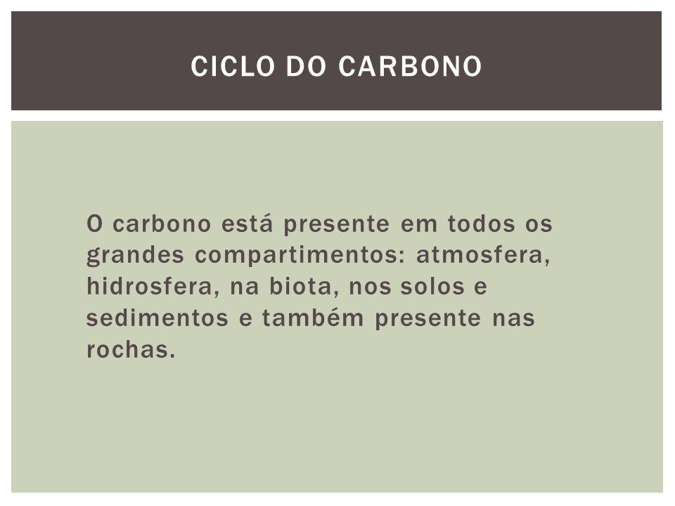 O carbono está presente em todos os grandes compartimentos: atmosfera, hidrosfera, na biota, nos solos e sedimentos e também presente nas rochas. CICL