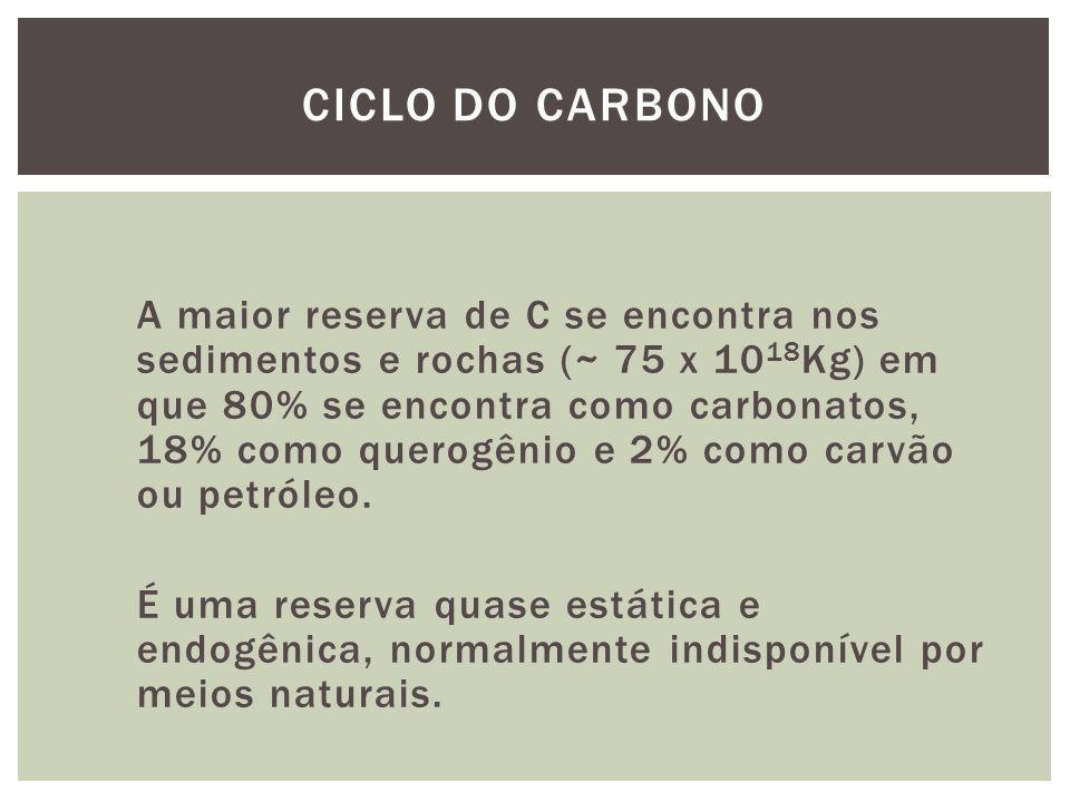 A maior reserva de C se encontra nos sedimentos e rochas (~ 75 x 10 18 Kg) em que 80% se encontra como carbonatos, 18% como querogênio e 2% como carvã