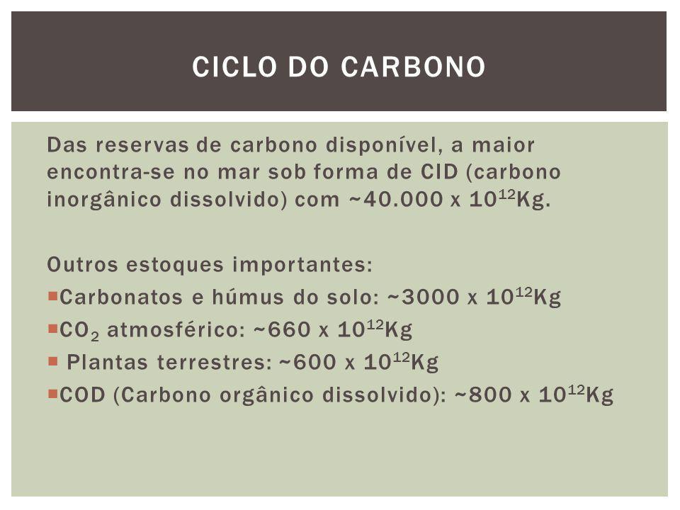 Das reservas de carbono disponível, a maior encontra-se no mar sob forma de CID (carbono inorgânico dissolvido) com ~40.000 x 10 12 Kg. Outros estoque