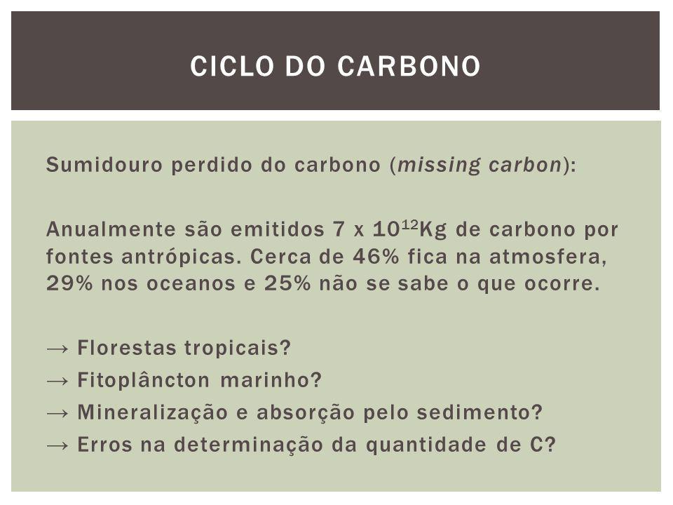 Sumidouro perdido do carbono (missing carbon): Anualmente são emitidos 7 x 10 12 Kg de carbono por fontes antrópicas. Cerca de 46% fica na atmosfera,