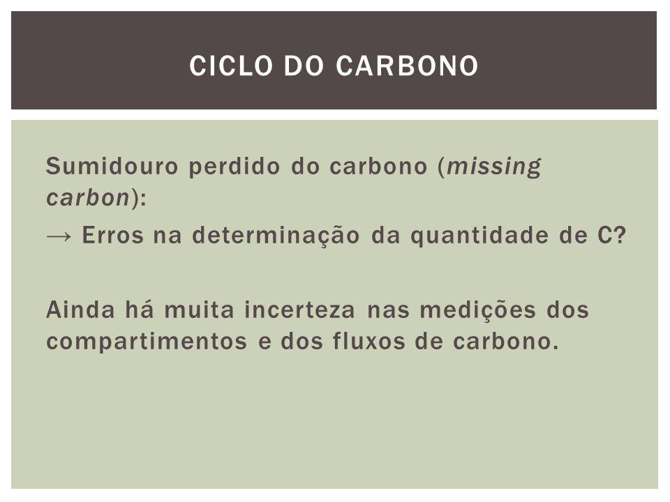 Sumidouro perdido do carbono (missing carbon): Erros na determinação da quantidade de C? Ainda há muita incerteza nas medições dos compartimentos e do