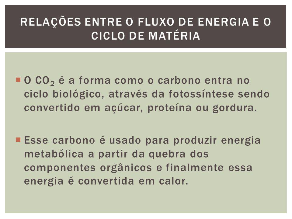 O CO 2 é a forma como o carbono entra no ciclo biológico, através da fotossíntese sendo convertido em açúcar, proteína ou gordura. Esse carbono é usad