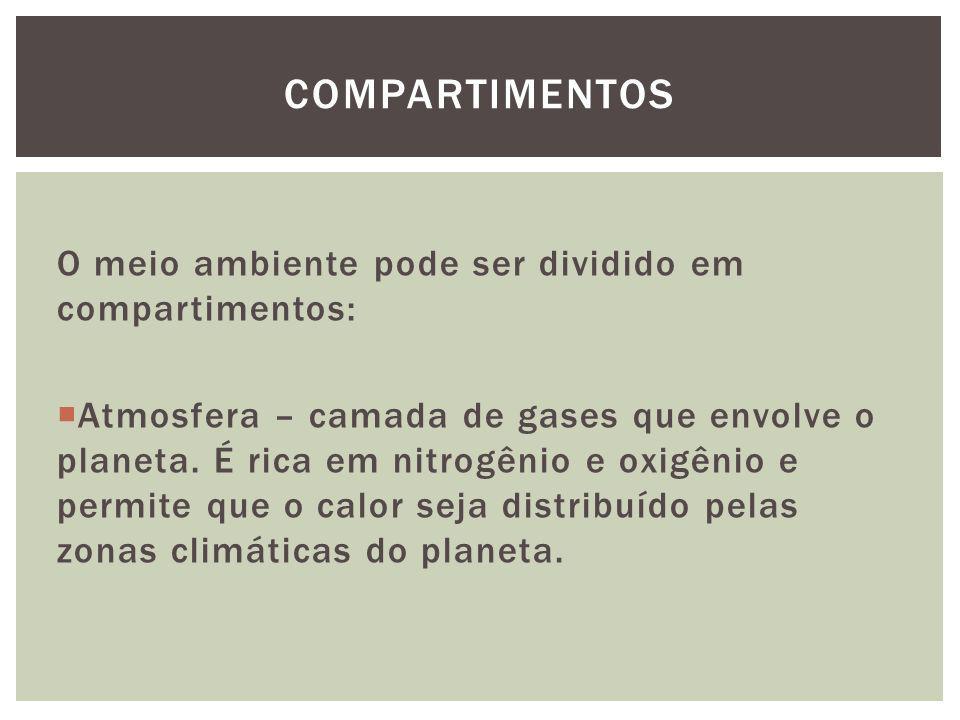 O meio ambiente pode ser dividido em compartimentos: Atmosfera – camada de gases que envolve o planeta. É rica em nitrogênio e oxigênio e permite que