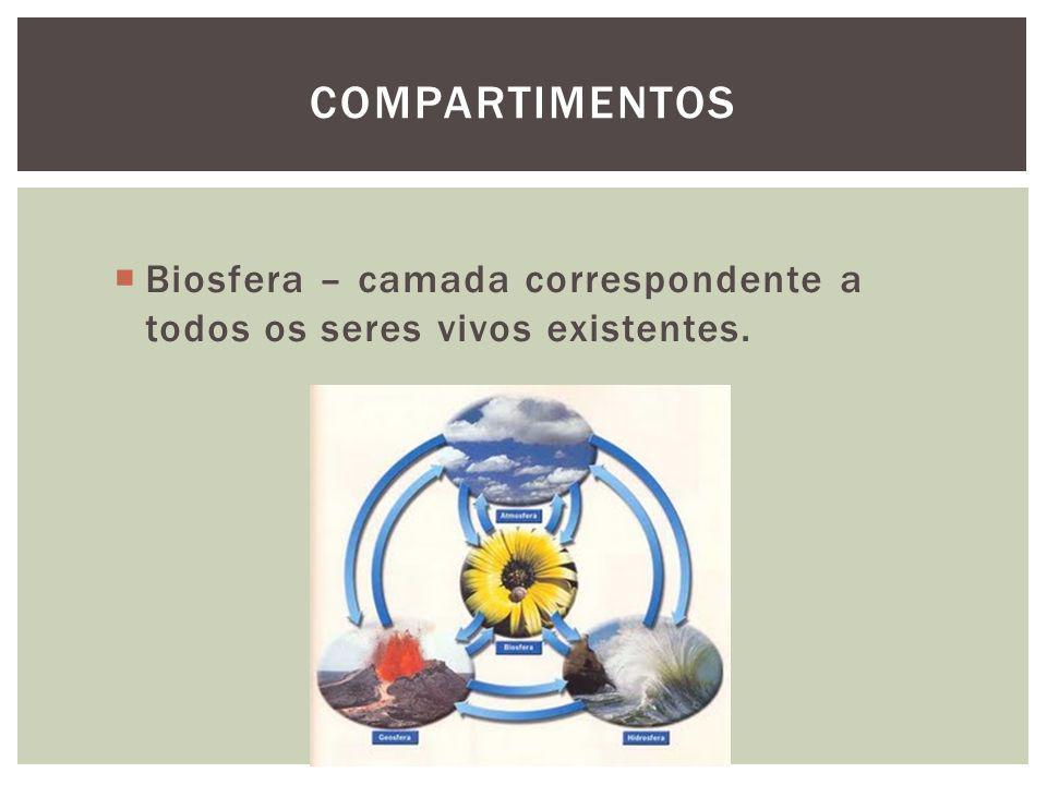 Biosfera – camada correspondente a todos os seres vivos existentes. COMPARTIMENTOS