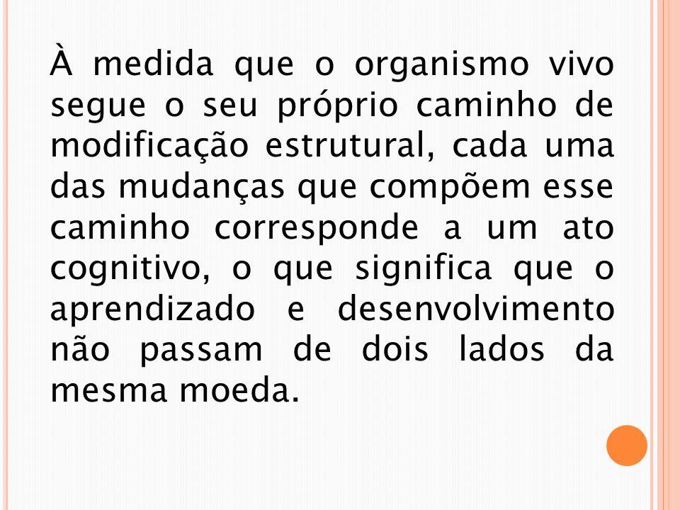 PROCESSO DA VIDA Funcionalismo, é a teoria mais popular dentre os filósofos e estudiosos da cognição de hoje em dia.
