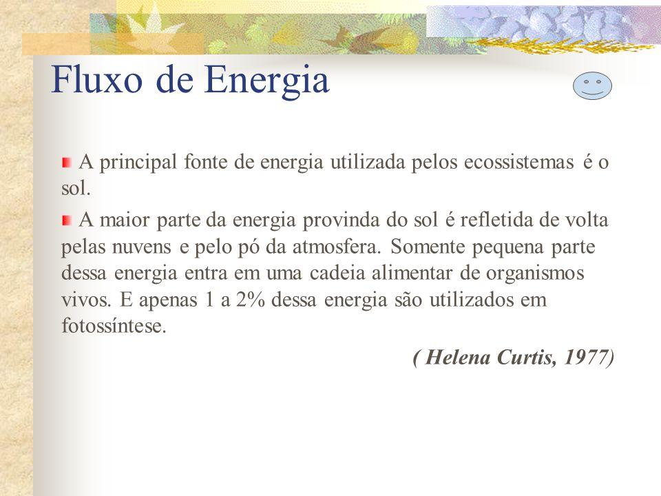 Fluxo de Energia A principal fonte de energia utilizada pelos ecossistemas é o sol. A maior parte da energia provinda do sol é refletida de volta pela