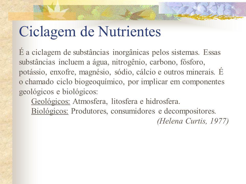 Ciclagem de Nutrientes É a ciclagem de substâncias inorgânicas pelos sistemas. Essas substâncias incluem a água, nitrogênio, carbono, fósforo, potássi