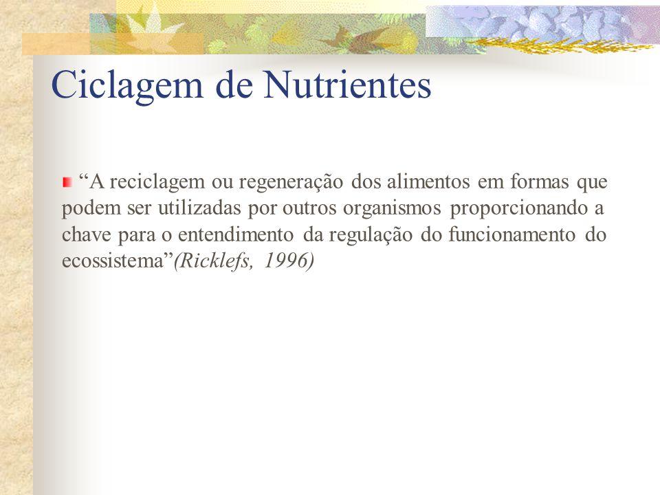 A reciclagem ou regeneração dos alimentos em formas que podem ser utilizadas por outros organismos proporcionando a chave para o entendimento da regul