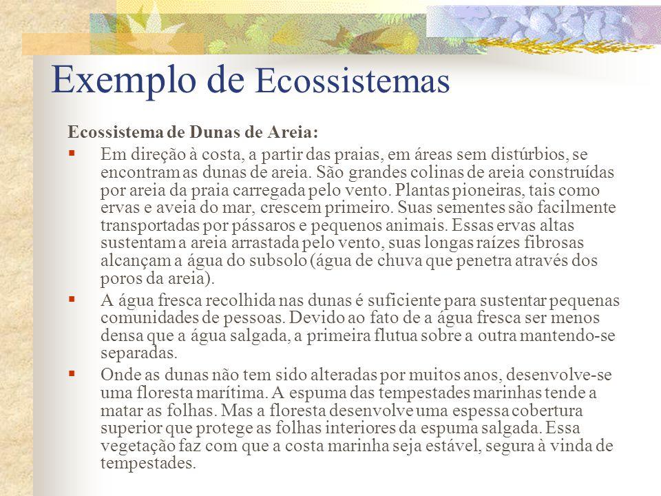 Bioma Bioma é considerado como conjunto de vida (vegetal e animal) constituído pelo agrupamento de tipos de vegetação contínuos e identificáveis em escala regional, com condições geoclimáticas similares e história compartilhada de mudanças, o que resulta em uma diversidade biológica própria (IBGE, 2003).