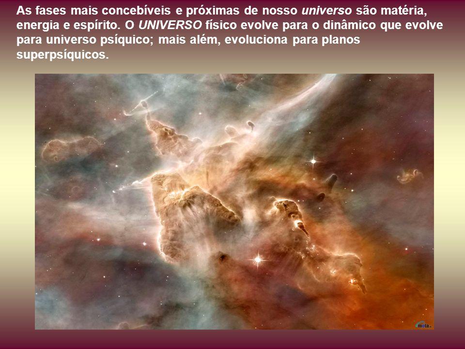 É empolgante observar e estudar o pensamento com que a LEI governa o funcionamento orgânico do universo e a nossa própria vida.