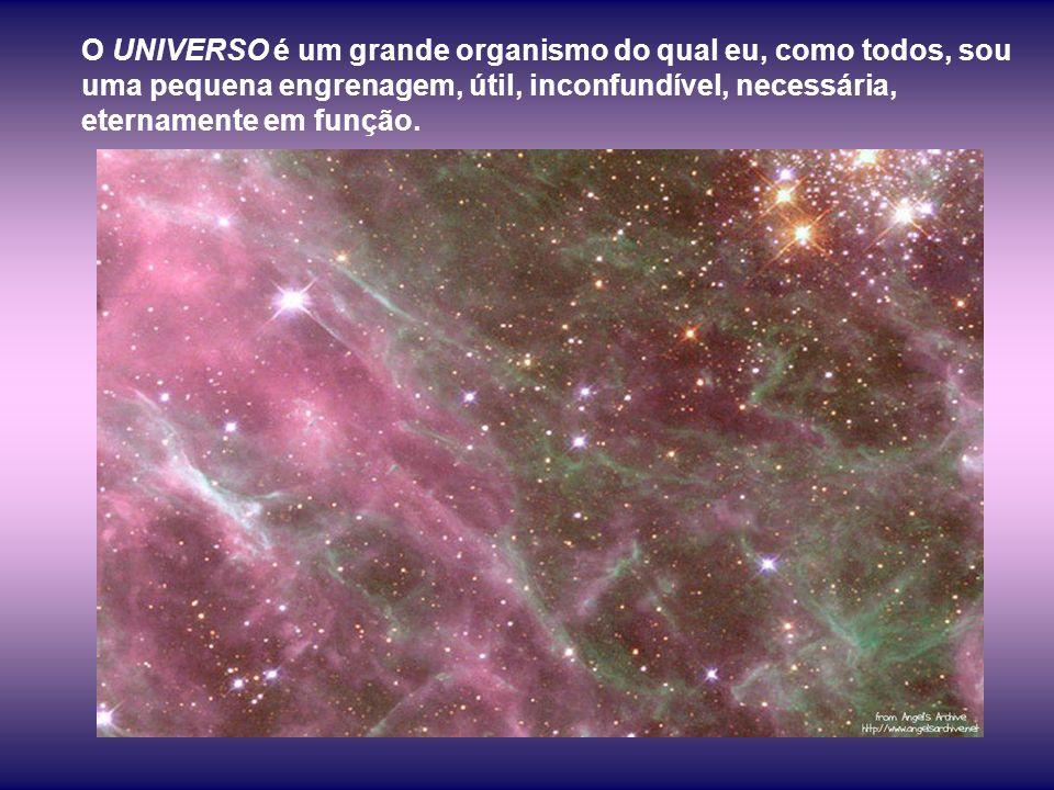 O UNIVERSO é organismo de forças que obedecem apenas a mãos habilidosas e sábias.