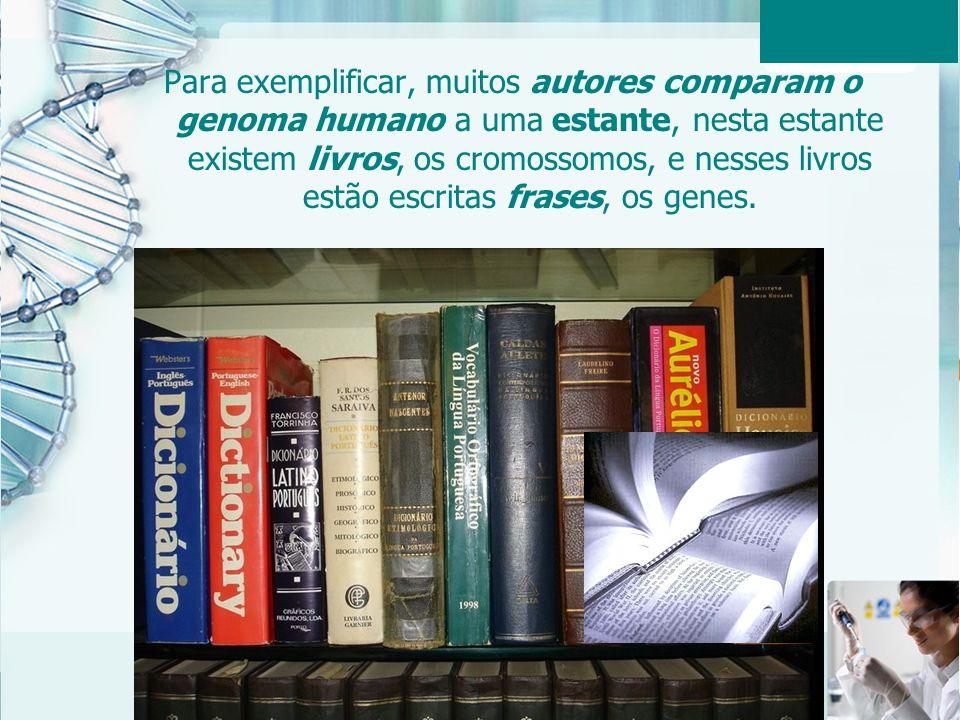 Aula 6 – Momento 2 11 Para exemplificar, muitos autores comparam o genoma humano a uma estante, nesta estante existem livros, os cromossomos, e nesses