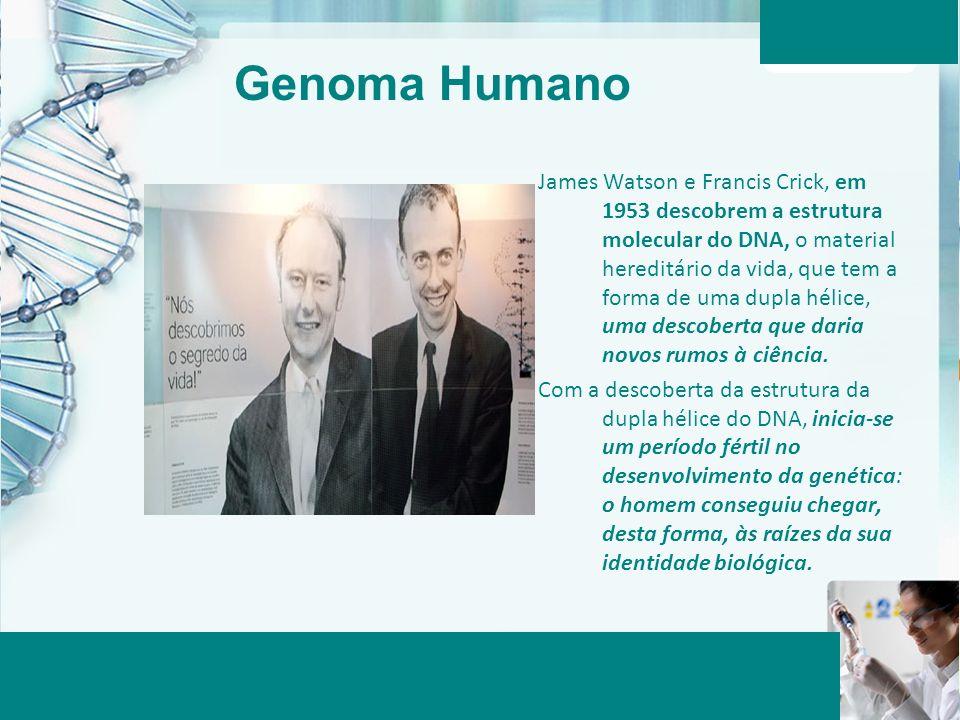 Aula 6 – Momento 2 James Watson e Francis Crick, em 1953 descobrem a estrutura molecular do DNA, o material hereditário da vida, que tem a forma de um
