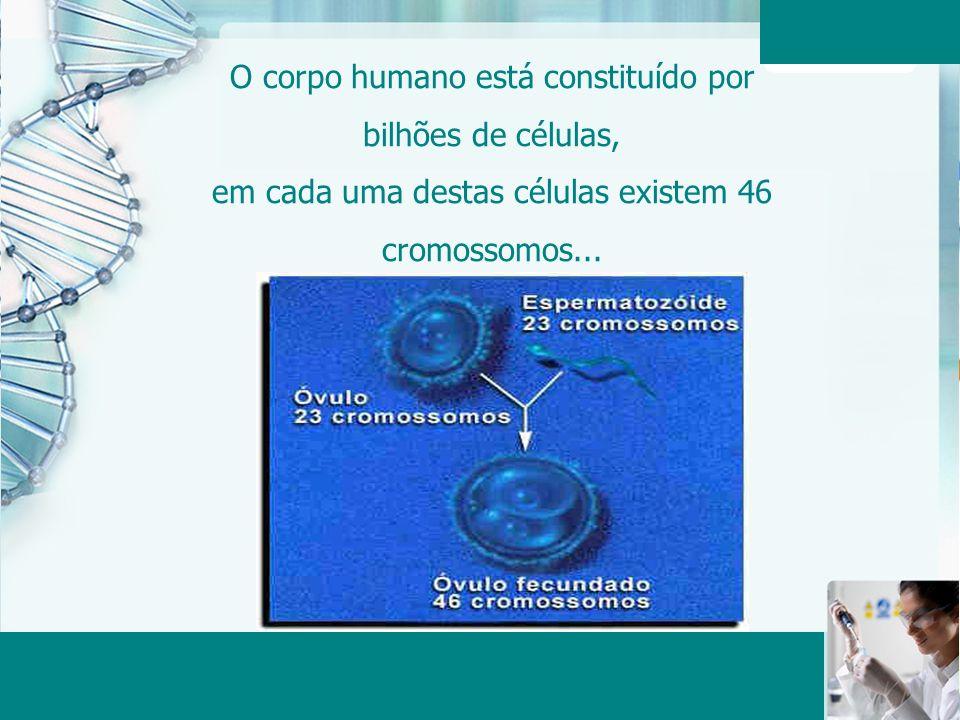 Aula 6 – Momento 2 O corpo humano está constituído por bilhões de células, em cada uma destas células existem 46 cromossomos...
