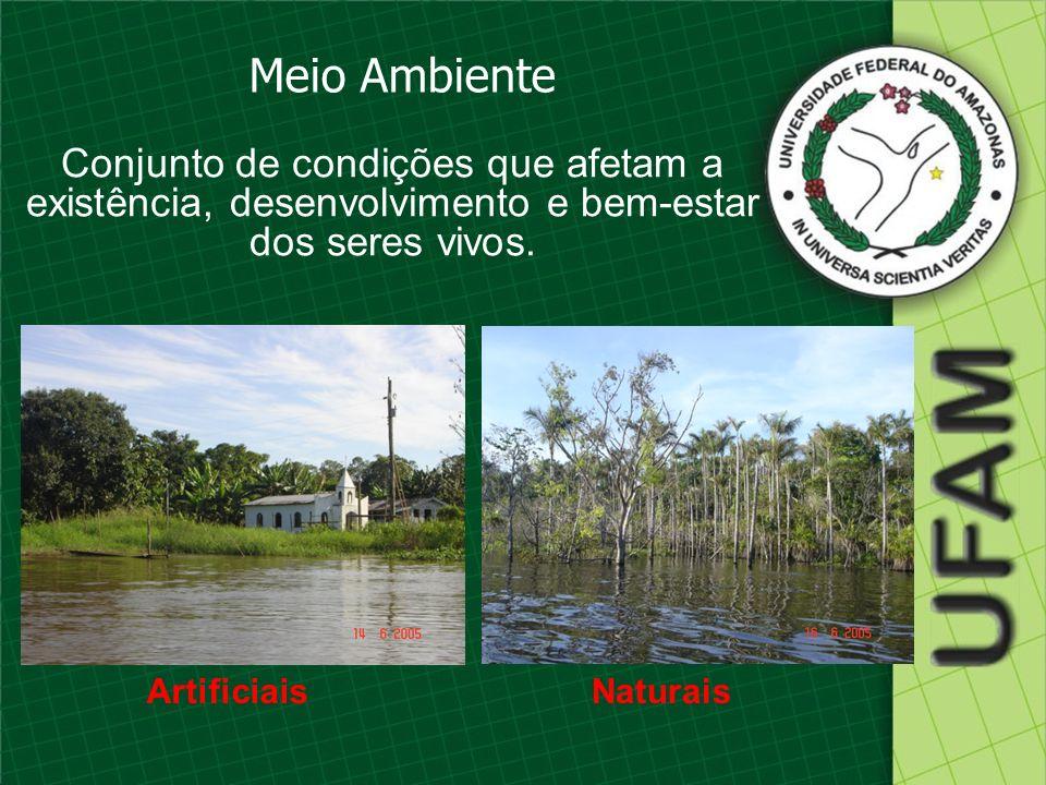 Meio Ambiente Conjunto de condições que afetam a existência, desenvolvimento e bem-estar dos seres vivos. ArtificiaisNaturais