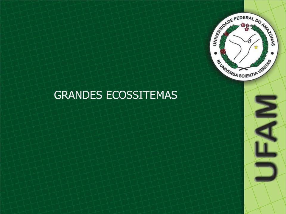 GRANDES ECOSSITEMAS