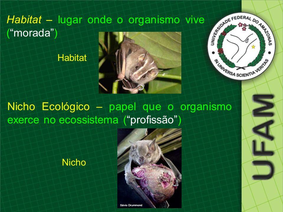 Habitat – lugar onde o organismo vive (morada) Habitat Nicho Nicho Ecológico – papel que o organismo exerce no ecossistema (profissão)