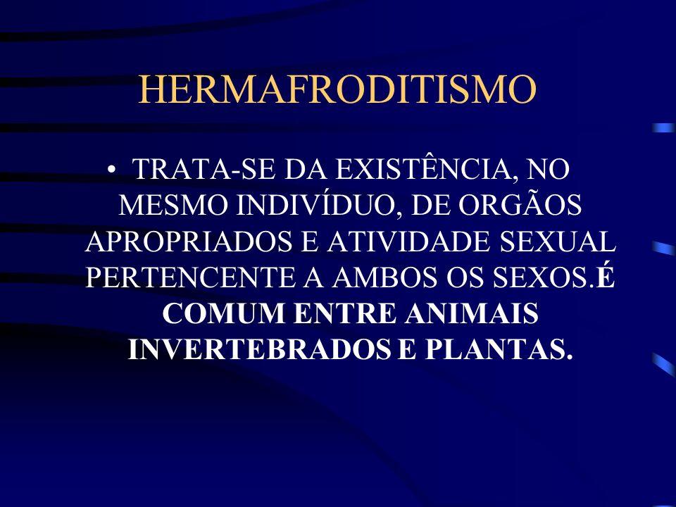 HERMAFRODITISMO TRATA-SE DA EXISTÊNCIA, NO MESMO INDIVÍDUO, DE ORGÃOS APROPRIADOS E ATIVIDADE SEXUAL PERTENCENTE A AMBOS OS SEXOS.É COMUM ENTRE ANIMAI