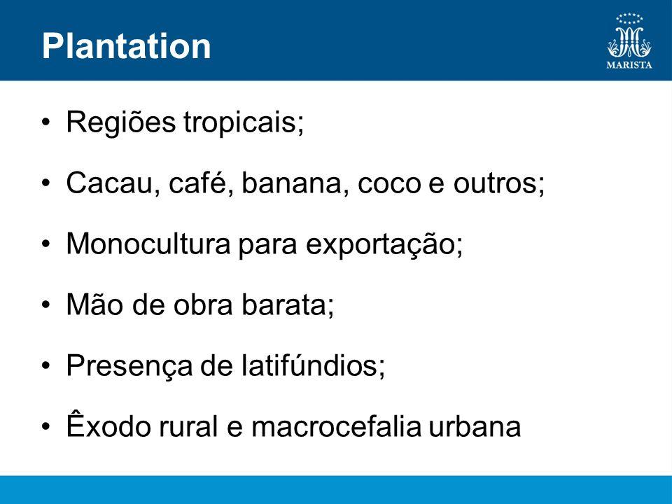 Plantation Regiões tropicais; Cacau, café, banana, coco e outros; Monocultura para exportação; Mão de obra barata; Presença de latifúndios; Êxodo rura