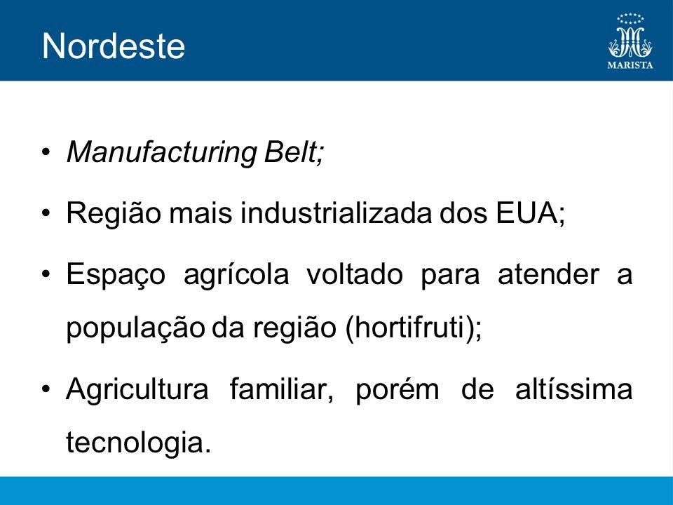 Nordeste Manufacturing Belt; Região mais industrializada dos EUA; Espaço agrícola voltado para atender a população da região (hortifruti); Agricultura