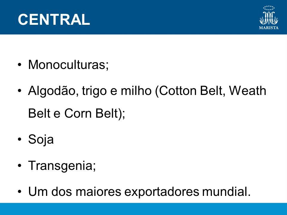 CENTRAL Monoculturas; Algodão, trigo e milho (Cotton Belt, Weath Belt e Corn Belt); Soja Transgenia; Um dos maiores exportadores mundial.