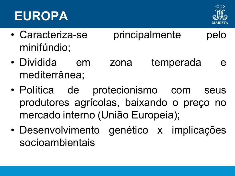 EUROPA Caracteriza-se principalmente pelo minifúndio; Dividida em zona temperada e mediterrânea; Política de protecionismo com seus produtores agrícol