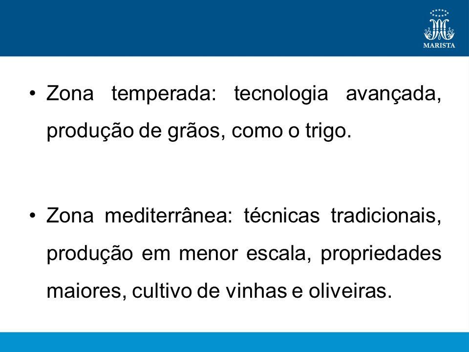 Zona temperada: tecnologia avançada, produção de grãos, como o trigo. Zona mediterrânea: técnicas tradicionais, produção em menor escala, propriedades