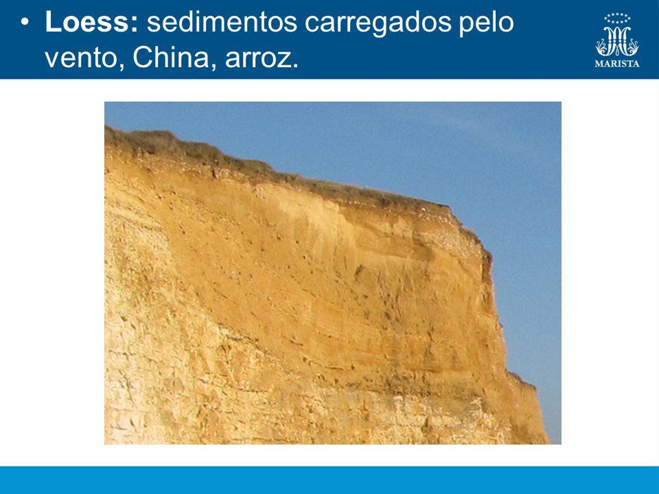 Loess: sedimentos carregados pelo vento, China, arroz.