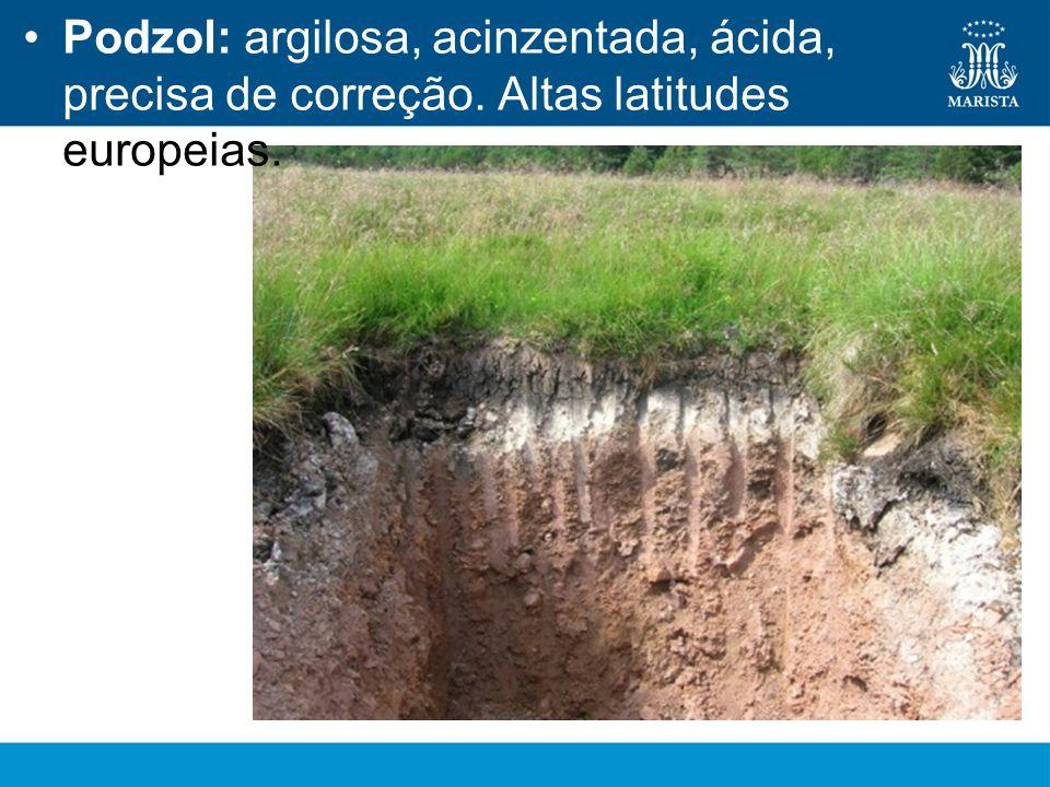 Podzol: argilosa, acinzentada, ácida, precisa de correção. Altas latitudes europeias.