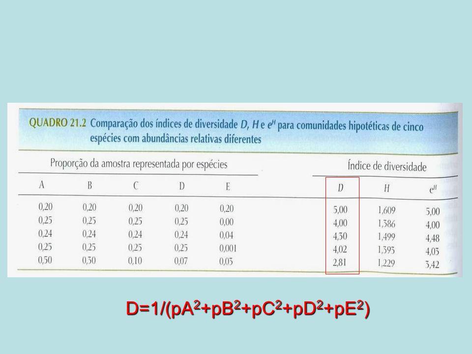 D=1/(pA 2 +pB 2 +pC 2 +pD 2 +pE 2 )