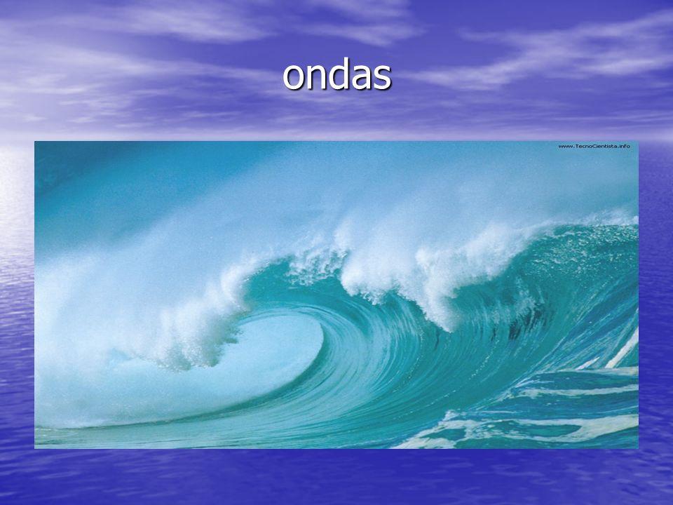 Texto do equipamento A prancha é o elo entre o surfista e o mar. A prancha é o elo entre o surfista e o mar. Ela tem que estar adaptada ao tamanho e á