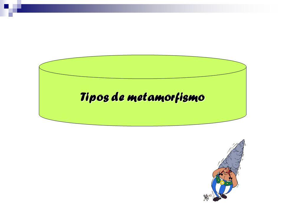 Tipos de metamorfismo