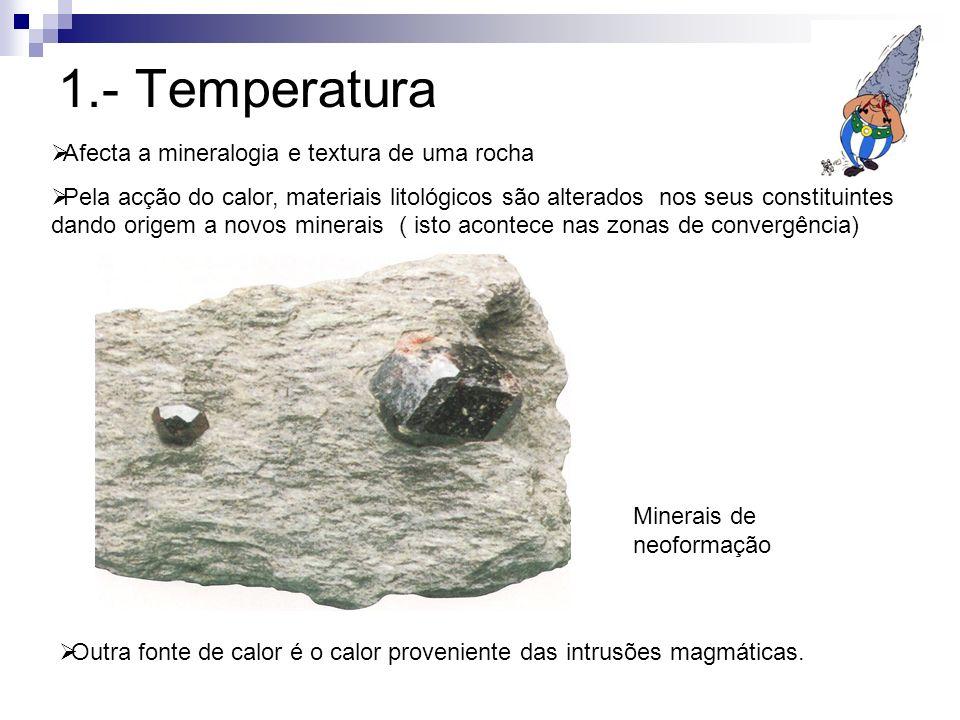 1.- Temperatura Afecta a mineralogia e textura de uma rocha Pela acção do calor, materiais litológicos são alterados nos seus constituintes dando orig