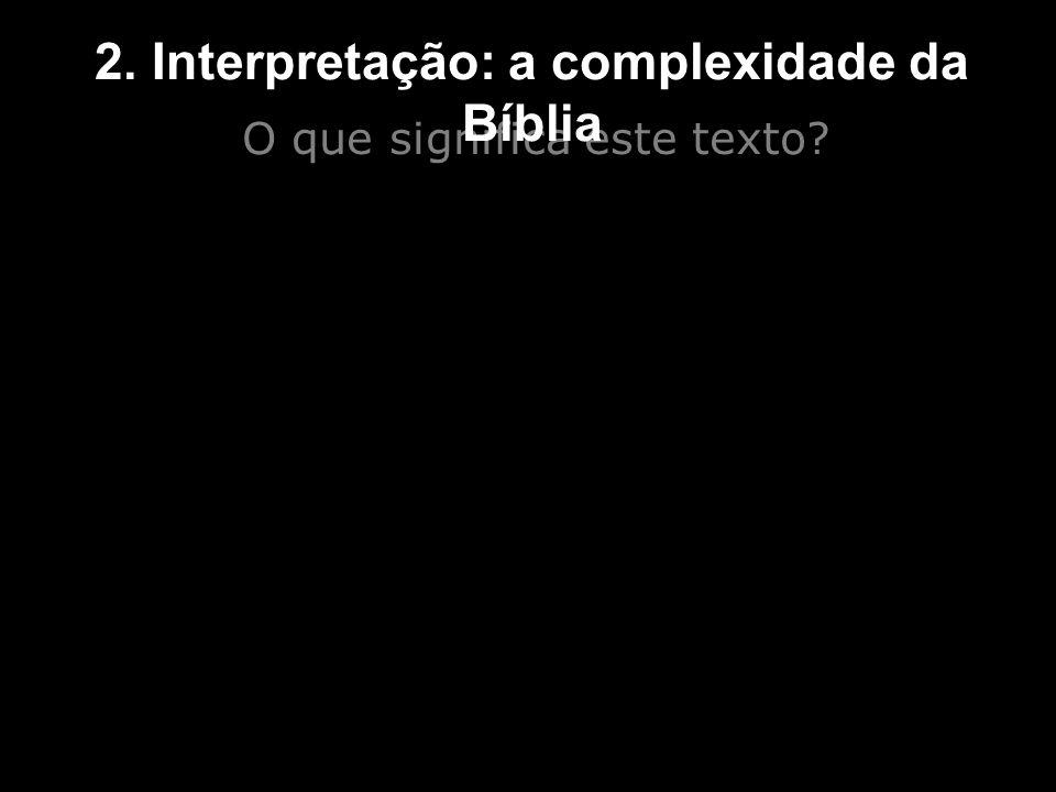 O que significa este texto? 2. Interpretação: a complexidade da Bíblia