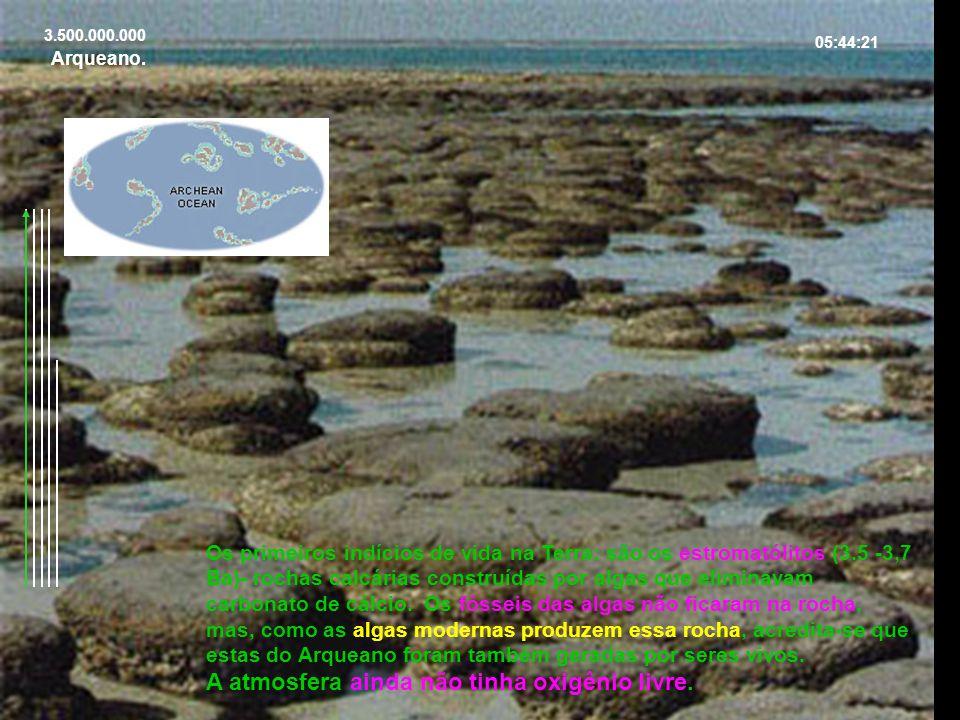 3.500.000.000 05:44:21 Os primeiros indícios de vida na Terra: são os estromatólitos (3.5 -3,7 Ba)- rochas calcárias construídas por algas que elimina