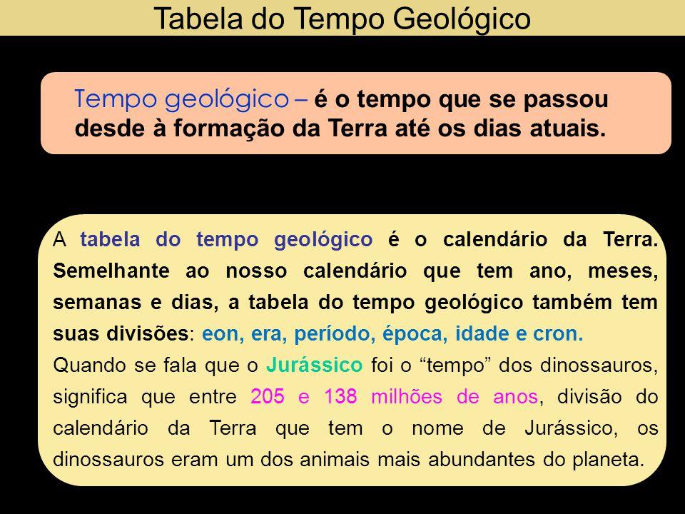 As divisões do calendário da Terra Eons Hadeano = inferno Arqueano = arcaico Proterozóico = vida primitiva Fanerozóico = vida visível Períodos Cambriano Ordoviciano Siluriano Devoniano Carbonífero Permiano Triássico Jurássico Cretáceo Paleógeno Neógeno Quaternário Abreviaturas Ba – bilhões de anos Ma – milhões de anos ma – mil anos Eras Paleoproterozóica = primeira vida antiga Mesoproterozóica = vida média primitiva Neoproterozóica: vida nova primitiva Paleozóica = vida antiga Mesozóica = vida média Cenozóica = vida nova Paleozóic a Mesozóic a Cenozóic a