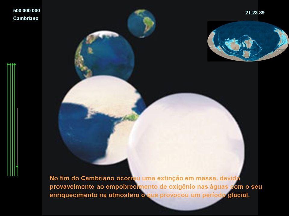 No fim do Cambriano ocorreu uma extinção em massa, devido provavelmente ao empobrecimento de oxigênio nas águas com o seu enriquecimento na atmosfera