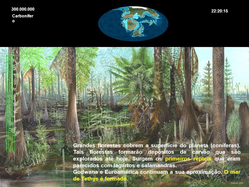 300.000.000 Grandes florestas cobrem a superfície do planeta (coníferas). Tais florestas formarão depósitos de carvão que são explorados até hoje. Sur
