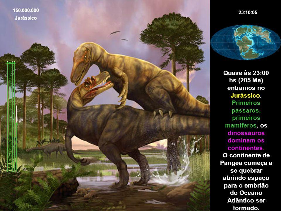 23:10:05 150.000.000 Jurássico Quase às 23:00 hs (205 Ma) entramos no Jurássico. Primeiros pássaros, primeiros mamíferos, os dinossauros dominam os co