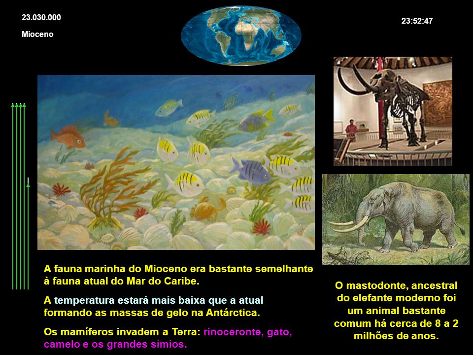 23.030.000 23:52:47 Mioceno A fauna marinha do Mioceno era bastante semelhante à fauna atual do Mar do Caribe. A temperatura estará mais baixa que a a